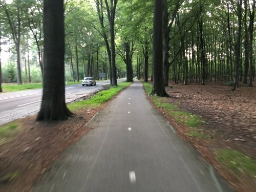 This photo was taken during a ride through the forest near Hilversum. The nearby trees really give you a sense of speed (and reason to stay focussed on steering straight...)