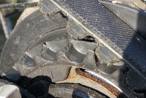 Gates Carbon Drive rear sprocket showing excessive wear after just 1800KM