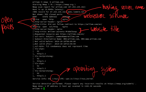 Using nmap to scan a hosting server, identifying network facing services and open ports